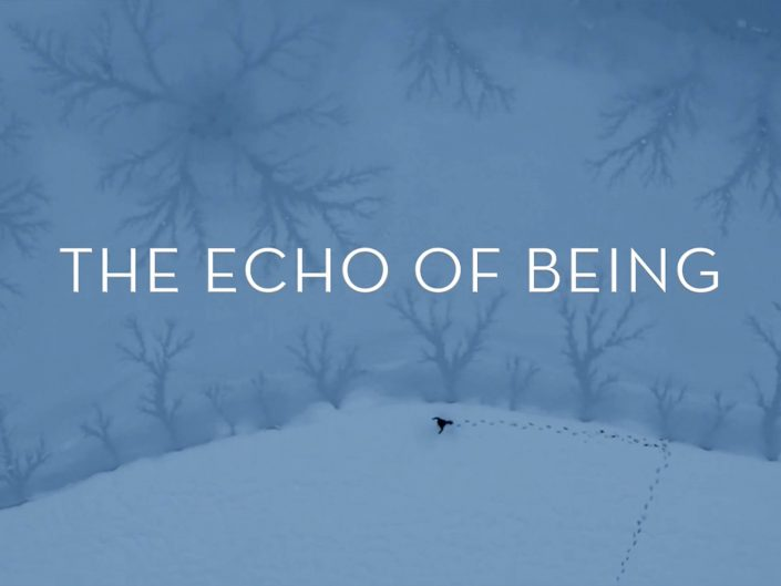 ECHO OF BEING | TRAILER